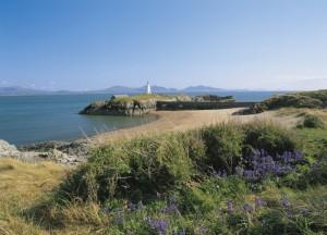 Ynys Llanddwyn Island, Anglesey Coastal Path Route